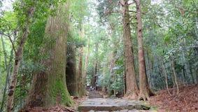 Rastro de Kumano Kodo Imagen de archivo