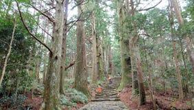Rastro de Kumano Kodo Foto de archivo libre de regalías