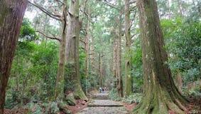 Rastro de Kumano Kodo Fotos de archivo