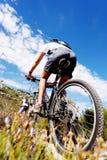 Rastro de la bici de montaña Imagen de archivo