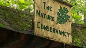Rastro de la conservación de la naturaleza (7 de 9) almacen de metraje de vídeo