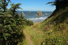 Rastro de la costa de Oregon Imagen de archivo