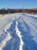 Rastro de la nieve imagen de archivo libre de regalías