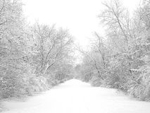 Rastro de la nieve del invierno Fotos de archivo