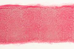 Rastro de la pintura roja del rollo para pintar en la pared Repare el concepto fotos de archivo libres de regalías
