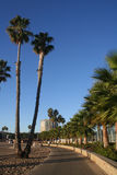Rastro de la playa Imagen de archivo libre de regalías