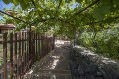 Rastro de la uva en el pueblo Fotos de archivo