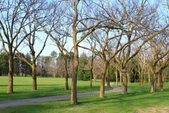 Rastro de la vecindad Foto de archivo libre de regalías
