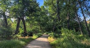 Rastro de la zona verde en Boise suroriental, Idaho Fotos de archivo libres de regalías