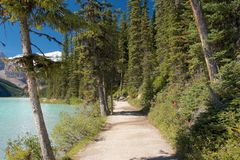 Rastro de Lake Louise Fotos de archivo libres de regalías