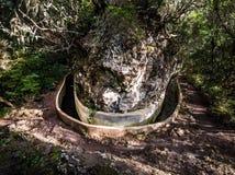 Rastro de Levada en Madeira, Portugal imágenes de archivo libres de regalías