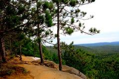 Rastro de los acantilados de los pinos Fotos de archivo libres de regalías