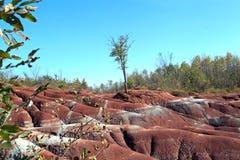 Rastro de los Badlands de Cheltenham, Canadá Imagen de archivo libre de regalías