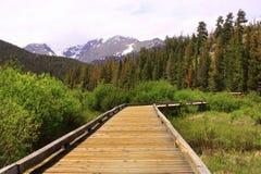 Rastro de madera con escena de la montaña Fotos de archivo libres de regalías