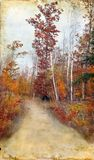 Rastro de maderas del otoño en el fondo de Grunge Fotos de archivo