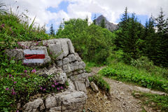 Rastro de montaña imagen de archivo