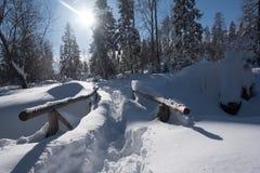 Rastro de montaña cubierto con nieve y nieves acumulada por la ventisca grandes Fotografía de archivo