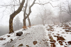 Rastro de montaña del invierno Imágenes de archivo libres de regalías