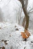 Rastro de montaña del invierno Fotografía de archivo libre de regalías
