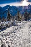 Rastro de montaña del invierno en la salida del sol Imágenes de archivo libres de regalías