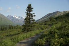 Rastro de montaña en Alaska Imagenes de archivo