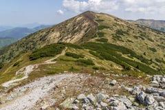 Rastro de montaña en Eslovaquia imagenes de archivo