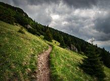 Rastro de montaña encima del prado escarpado Imagen de archivo