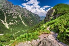 Rastro de montañas estrecho que lleva el pico Fotos de archivo libres de regalías