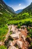 Rastro de montañas pedregoso que lleva el pico Imagenes de archivo