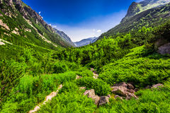 Rastro de montañas pedregoso que lleva el top Imagen de archivo libre de regalías