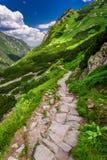 Rastro de montañas que lleva el pico en el día soleado Imagen de archivo libre de regalías