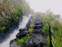 Rastro de Nacientes Marcos y Cordero, La Palma Imagen de archivo libre de regalías