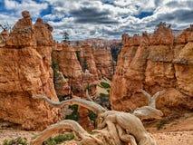 Rastro de Navajo de las malas sombras de Bryce Canyon, Utah Imágenes de archivo libres de regalías