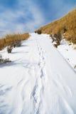 Rastro de pie en nieve Fotos de archivo libres de regalías