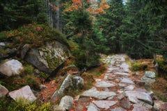 Rastro de piedra en las montañas de Karkonosze Imágenes de archivo libres de regalías
