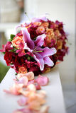 Rastro de Rose Fotos de archivo