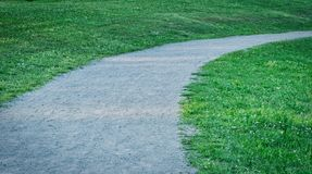 Rastro de Sandy en el parque Imagen de archivo libre de regalías