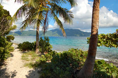 Rastro de Sandy en la isla abandonada Foto de archivo