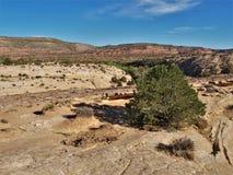 Rastro de Slickrock en el parque nacional de Canyonlands fotos de archivo libres de regalías