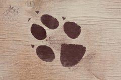 Rastro del animal Fotografía de archivo