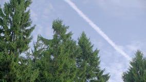 Rastro del avión en el cielo almacen de video