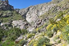 Rastro del barranco de Tahquitz Fotos de archivo