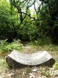 Rastro del bosque foto de archivo libre de regalías