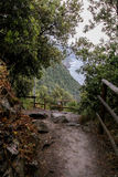 Rastro del bosque con vistas de las colinas enselvadas Fotos de archivo libres de regalías