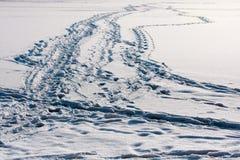 Rastro del camino en el lago congelado imagen de archivo