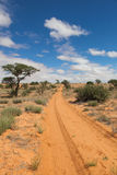Rastro del desierto Fotos de archivo