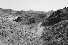 Rastro del desierto de la piedra de B&W Imagen de archivo
