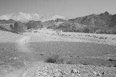Rastro del desierto de la piedra de B&W Fotografía de archivo