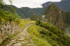 Rastro del inca en Machu Picchu Foto de archivo libre de regalías