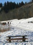 Rastro del invierno Imagen de archivo